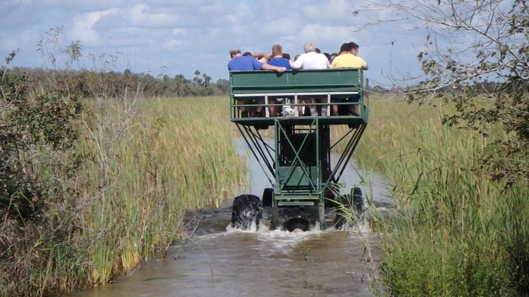 ZZ Ninja Kid: Planes, Trains, Autos & Boats #16 Swamp Buggy, Everglades