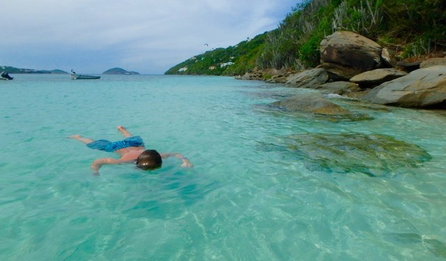 Safari & Swim, Magens Bay, St Thomas, US Virgin Islands