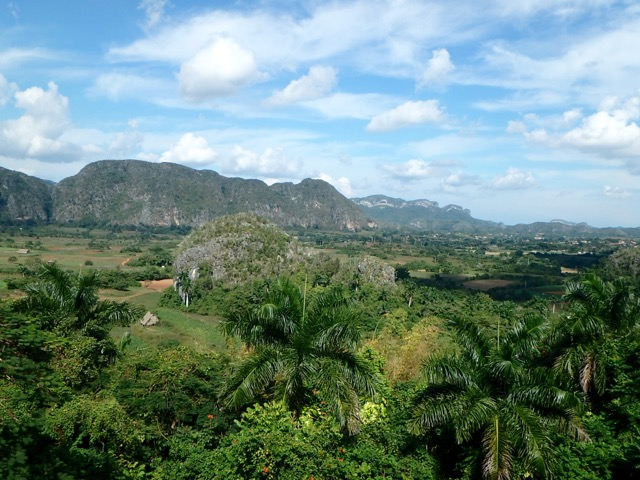 ZZ Ninja Kid: World Snooze Tour - Bed #31 Viñales, Cuba