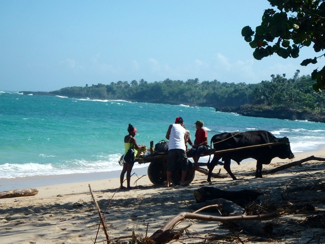 Chocolate, Pig & Coconuts – Wild Nature in Baracoa, Cuba