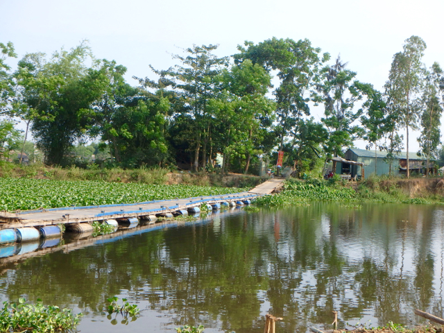 Floating bamboo bridge